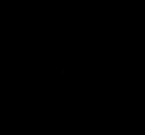 Logo_Kaffeebohne